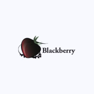 Collection : Blackberry